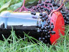 Rozgrzewający syrop z czarnego bzu - Przepisy kulinarne - Przetwory Food And Drink, Drinks, Food, Beverages, Drink, Beverage, Cocktails, Drinking