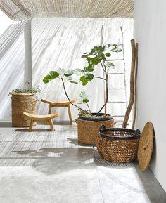 nouvelle-collection-am-pm-jardin-d-interieur-avec-des-paniers-en-osier-plantes-et-tabourets_5499825