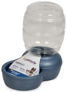 Petmate Replenish Pet Waterer with Microban 1/2-Gallon Pearl Peacock Blue Pet Supplies Near Me