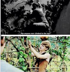 IM SURE YOU DID TRY NEWT!!