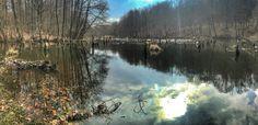 szepkilatas.blog.hu Hubertfalvi-tó, Bakony. Gyilkos tó 2.