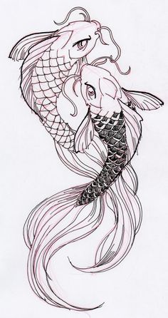 Two cool Koi Fish Ink Drawing