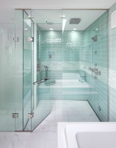Contemporary Steam Shower