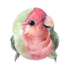 Bird Watercolor Paintings, Watercolor Animals, Mini Canvas Art, Watercolor Painting Etsy, Art, Love Birds Painting, Watercolor Bird, Bird Illustration, Bird Art