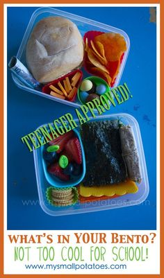 Teenager Approved Bento... FOR BOYS! :)