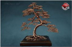 Bonsai tree made of copper, a gift for the wedding anniversary 7th Anniversary, Wedding Anniversary Gifts, Wedding Gifts, Ficus, Copper Gifts, Bonsai Wire, Wire Trees, Copper Wire, Brass
