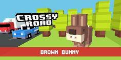 Got brown bunny