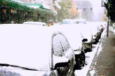 Winter in Seattle 2010.