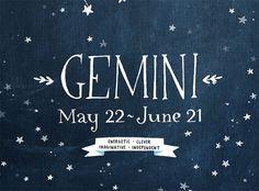 Gemini ~ energetic, clever, imaginative, independent