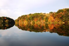 Image Detail for - ... of Fall – Mill Creek Park, Youngstown, OH |