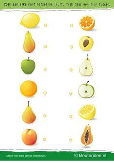 Zoek aan elke kant hetzelfde fruit , kleuteridee.nl , search on each side the same fruit , free printable.
