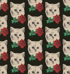 white cat with red rose pattern