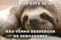 sossolteiros_deboismo_3