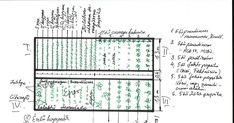 Blog a vegyszermentes kertészetről. Biokert. Konyhakert vegyszermentesen. Bevált praktikák a kertben. Garden Projects, Garden Ideas, Organic Gardening, Blog, Sweet, Google, Candy, Blogging, Landscaping Ideas
