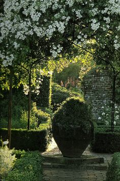 by shana Sissinghurst White Garden. by shanaWhite Garden. by shana Sissinghurst White Garden. by shana Formal Gardens, Outdoor Gardens, Landscape Design, Garden Design, Landscape Architecture, Vita Sackville West, The Secret Garden, Famous Gardens, White Gardens