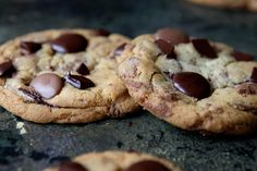 chewy chocolate chip cookies with chocolate discs instead of chips! i like!