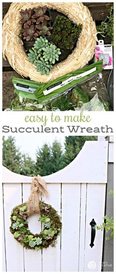 Succulent Wreath | H