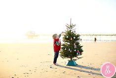 christmas tree on the beach? perfect florida christmas card idea :)