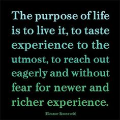 Image result for quotes on living life on purpose