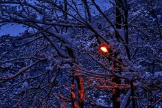 Lamp and Snow..