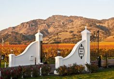 The Most Extravagant Napa Valley Wine Tours & Tastings