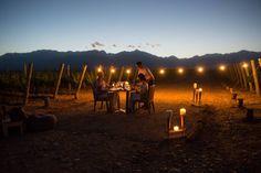 Momentos increíbles y este. Mendoza, tierra del buen sol y del buen vino, es un destino perfecto para relajarse rodeado de imponentes paisaje y disfrutar de deliciosas experiencias gastronomicas acompañadas de los mejores vinos. Consulte por su experiencia a medida! #vinos #gourmet #gastronimia #delicioso #experiencias #viajes #paisajes #mendoza #argentina #acrossargentina Mendoza, Andes Mountains, Mountain Range, Culinary Arts, Fruit Trees, Horses, River, Explore, Animals