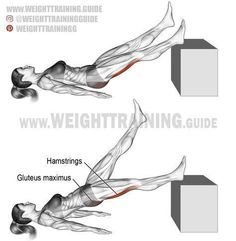 Lying single straight-leg hip extension. Exercise type: Isolation push. Target muscles: Hamstrings (Biceps Femoris, Semitendinosus, and Semimembranosus). Synergists: Gluteus Maximus and Adductor Magnus. #fitnesssingles,