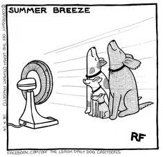 Summer Breeze © Off The Leash / Rupert Fawcett