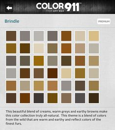 Valspar lyndhurst gothic tan paint with oiled gunsmoke - Interior paint colors that go together ...
