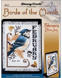 Birds Of The Month-February (Blue Jay)