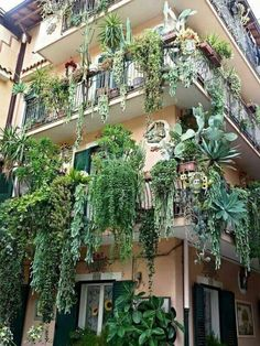 sunshineandsucculents: I need to live here!