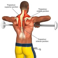 Neck (Traps) Strength training exercises. My chiropractic recommended for me to…