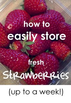 store fresh strawberries
