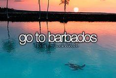 Go to Barbados.