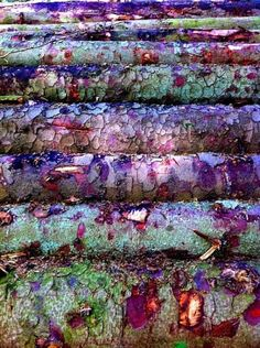 Inspiring rust colors and textures. Patterns In Nature, Textures Patterns, Color Patterns, Natural Forms, Natural Texture, Natural Colors, Art Texture, Peeling Paint, Art Abstrait