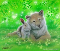 Rabbit and Shiba in Together 2