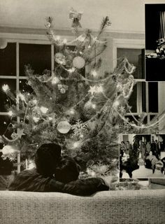 Athena Yearbook, 1956. A couple relaxing and admiring their beautiful Christmas tree :: Ohio University Archives