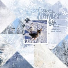 Welcome winter   Geese in the snow. I made this page with Kiss of Winter Bundle from Jen Maddocks, available at Digital Scrapbooking Studio here: http://www.digitalscrapbookingstudio...winter-bundle/ Also used: Artisan Favorite Templates 7 by Jen Maddocks, available at Digital Scrapbooking Studio here: http://www.digitalscrapbookingstudio...e-templates-7/