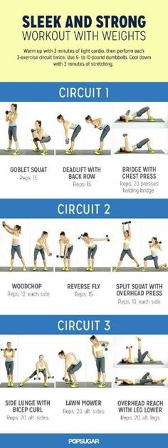 Looking for an effective circuit workout? This workout with weights is perfect to tone your arms. by candice
