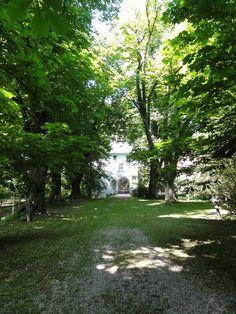 Kastanienallee Berg, Sidewalk, Side Walkway, Walkway, Walkways, Pavement