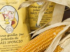 Sponcio corn is an old corn variety cultivated in the Dolomites in Italy since the 19th century. The flour obtained from this corn variety has better nutritional qualities. Traditionally used for making Polenta. yumm!
