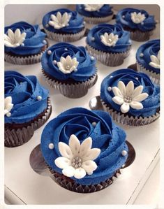 Navy Blue with Fondant Daisies Cupcakes Au Cholocat, Sweet 16 Cupcakes, Mothers Day Cupcakes, Buttercream Cupcakes, Wedding Cakes With Cupcakes, Baking Cupcakes, Cupcake Cakes, Blue Frosting, Ideas Party