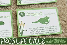 Frog Life Cycle with Printables. These are great sequencing cards of the frog life cylce. Science Lessons, Science For Kids, Science Activities, Educational Activities, Life Science, Sequencing Activities, Art Lessons, 1st Grade Science, Kindergarten Science
