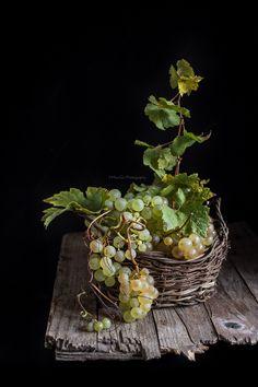 Grapes, food photography, Corsi Food photography in Italia, Dazzero, Moni Qu Photography