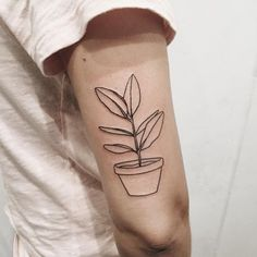 potted plant tattoo | minimal tat | boho | hippy | nature tattoo