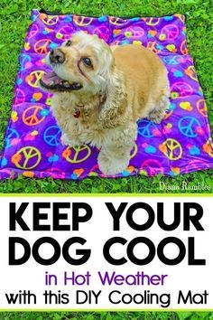 DIY Dog Cooling Mat Sewing Tutorial - Want to keep your dog cooled off this summer? Here is a DIY Dog Cooling Mat Tutorial that will keep your pooch cool while he's outside with the family. It's great pet bed for warm weather climates. It's easy to make a Diy Dog Stuff, Cool Stuff, Sewing Basics, Basic Sewing, Sewing Diy, Sewing Ideas, Dog Cooling Mat, Costura Diy, Dog Items