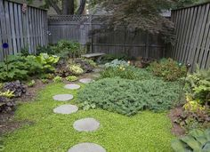Great landscaping idea for a tiny yard. Concrete stepping stones lead to a serene seating area
