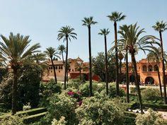 A few days in sunny Seville Bus Ride, Sunnies, Adventure, Night, Street, City, Plants, Blog, Photos