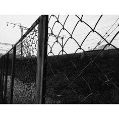 Всему свое время.  #photographer #photography #pho #photoshoot #photos #art #composition #picoftheday #picture #love #photooftheday #girl #followme #nature #urbandecay #urban #color #wb #white #blackandwhite #kimkardashian #kyliejenner #фото #фотография #искусство #фотограф #фильтр #владивосток #природа #картина http://tipsrazzi.com/ipost/1505651405334343271/?code=BTlJfnShW5n