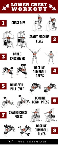 8 Lower Chest Workouts for Defined Pecs - SQUATWOLF